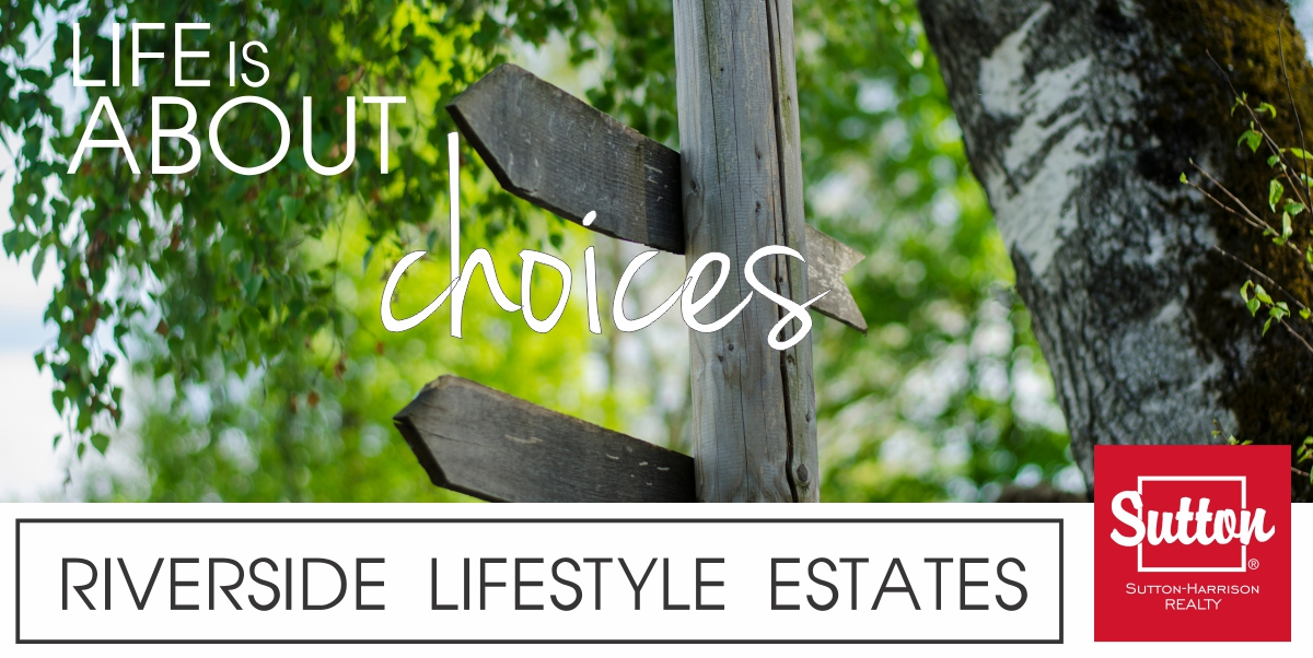 image-life is about choices